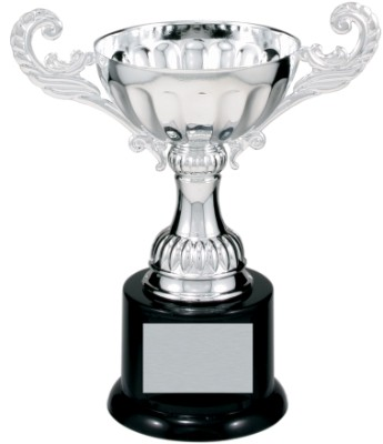 """6 1/2"""" Silver Completed Metal Cup Trophy on Plastic Base"""