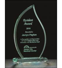 Flame Series Jade Glass Award