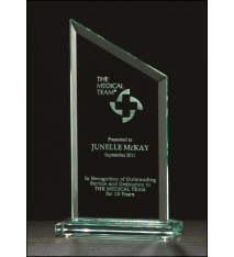 Zenith Series Glass Award
