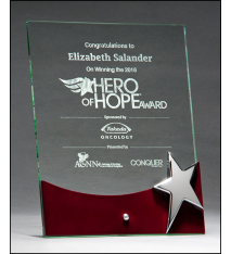 Silver Star Free Standing Glass Award