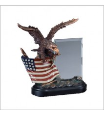 EAGLE ON FLAG WITH GLASS
