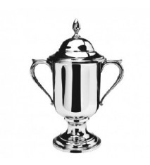 """Medium Loving Cup with Lid, 10"""" tall"""