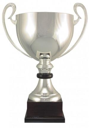 "16-1/2"" ASSEMBLED CUP"
